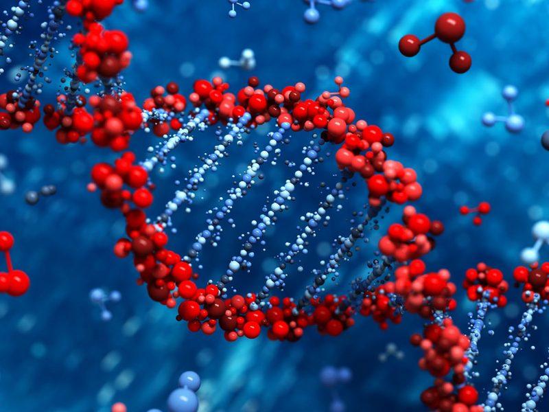 DNA Testing DrGene - Lucid